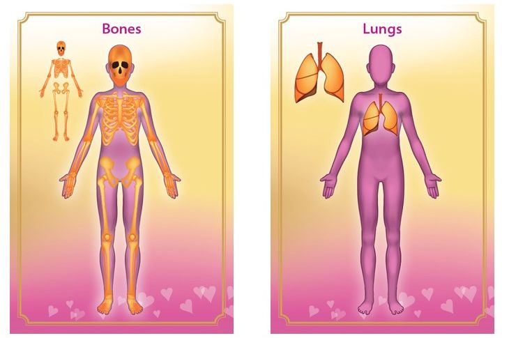 Medical Intuitive Cards